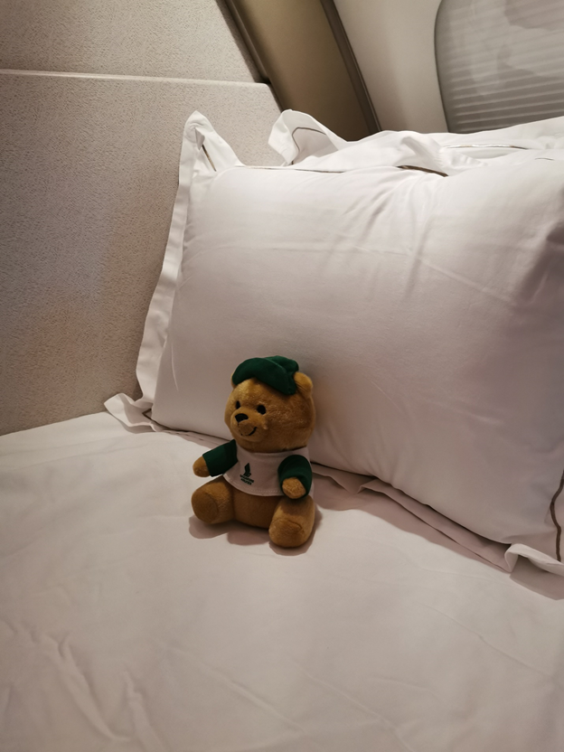 Complimentary Teddy Bear